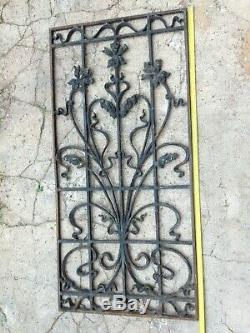 Grille de porte en fonte. Art nouveau 104x50 cm motif floral iris dans sont jus